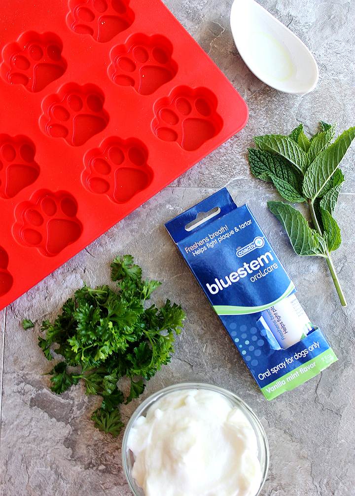 4 Ingredient Mint Parsley Pup Treats to help combat bad breath! bluestem™ with coactiv+™ water additives and breath sprays can help fight tartar build up and bad breath in your dog. It's a fuss free way to help support healthy oral hygience! #bluestempets #ad