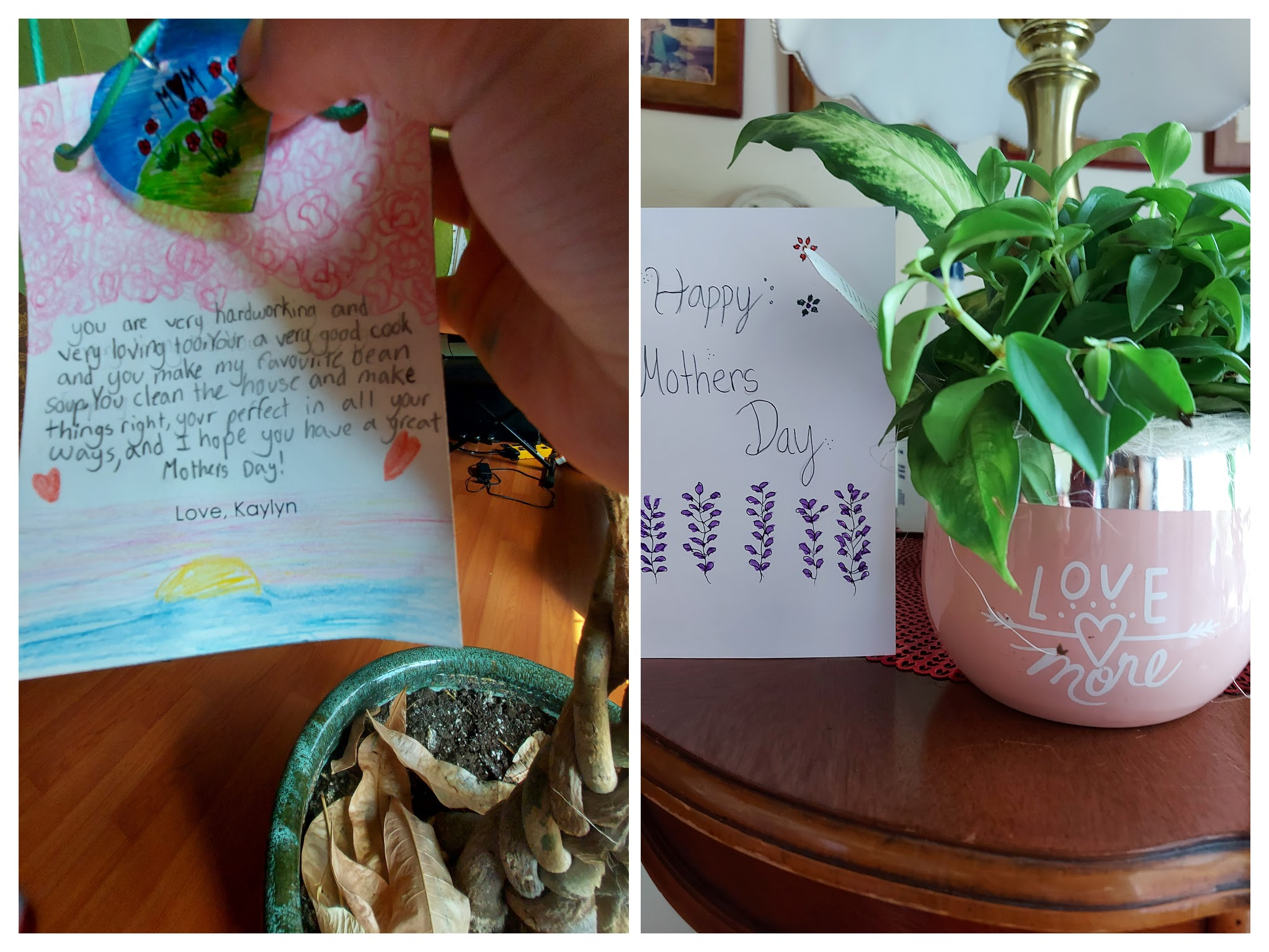 Homemade Mother's Day Cards And Plants Gift.
