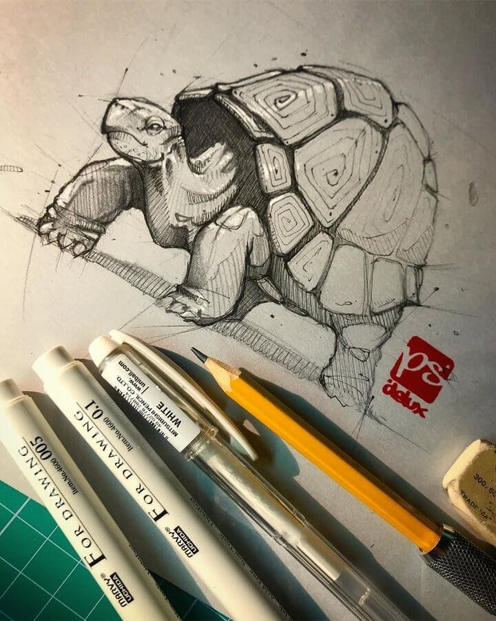 02-Tortoise-Psdelux-Fineliner-Ink-and-Pencil-Animal-Drawings-www-designstack-co