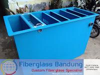 filter air bak ikan