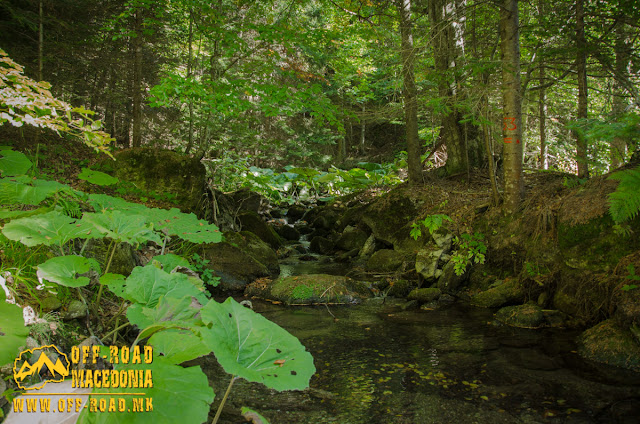 Five Springs area on Nidze Mountain, Mariovo Region, Macedonia