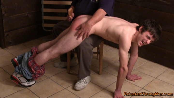 Bisexual shemale free videos