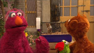 Telly, Baby Bear, parrot Ralphie, hamster Chuckie Sue, Sesame Street Episode 4401 Telly gets Jealous season 44