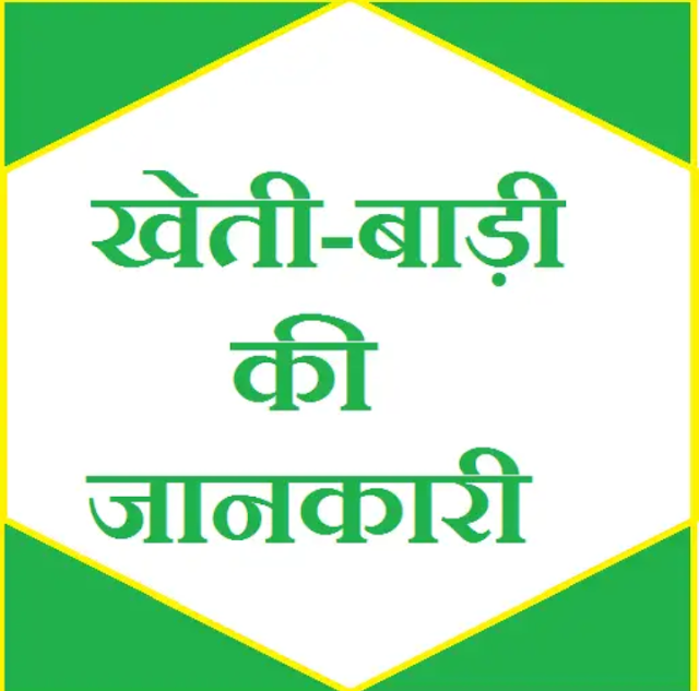 At the present time, many young people are beginning to take an interest in agriculture. If you can get information about crops, then Friends come and tell you some agricultural applications that will help you in your farming. 1. Kishan Suvidha app 2. Gramophone krishi app 3. Jfarm Services App 4. Kheti-Badi app 5. RML Farmer