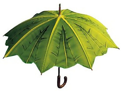 Stylish Umbrellas and Unique Umbrella Designs (15) 15