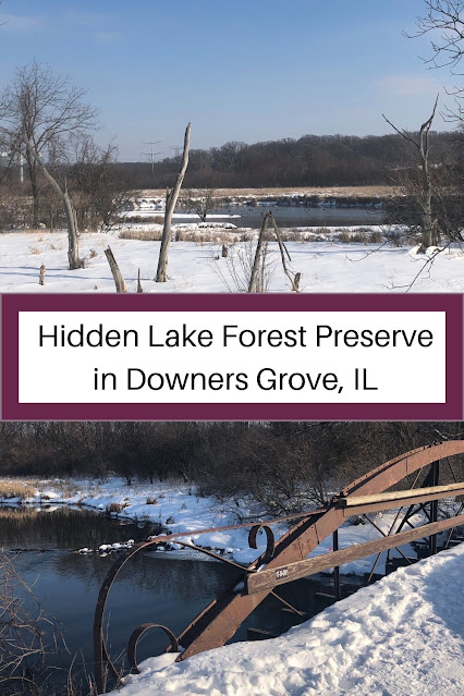 Late Winter Wander at Hidden Lake Forest Preserve in Downers Grove, IL