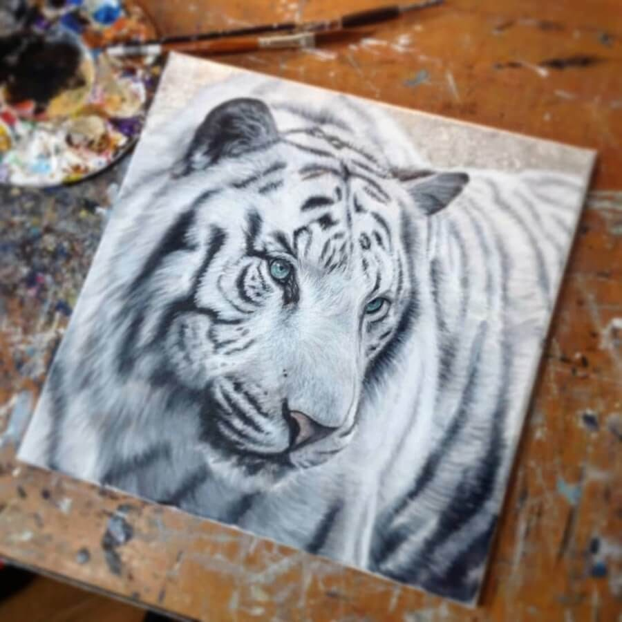 11-White-Tiger-Amber-Tyldesley-www-designstack-co