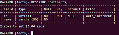 The figure shows output of DESCRIBE command in MySQL.