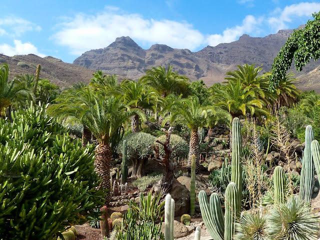 Roadtrip Gran Canaria – Bei dieser Inselrundfahrt lernst du Gran Canaria kennen! Sightseeingtour Gran Canaria. Die schönsten Orte auf Gran Canaria 11