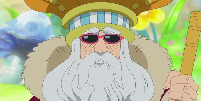 raja di one piece