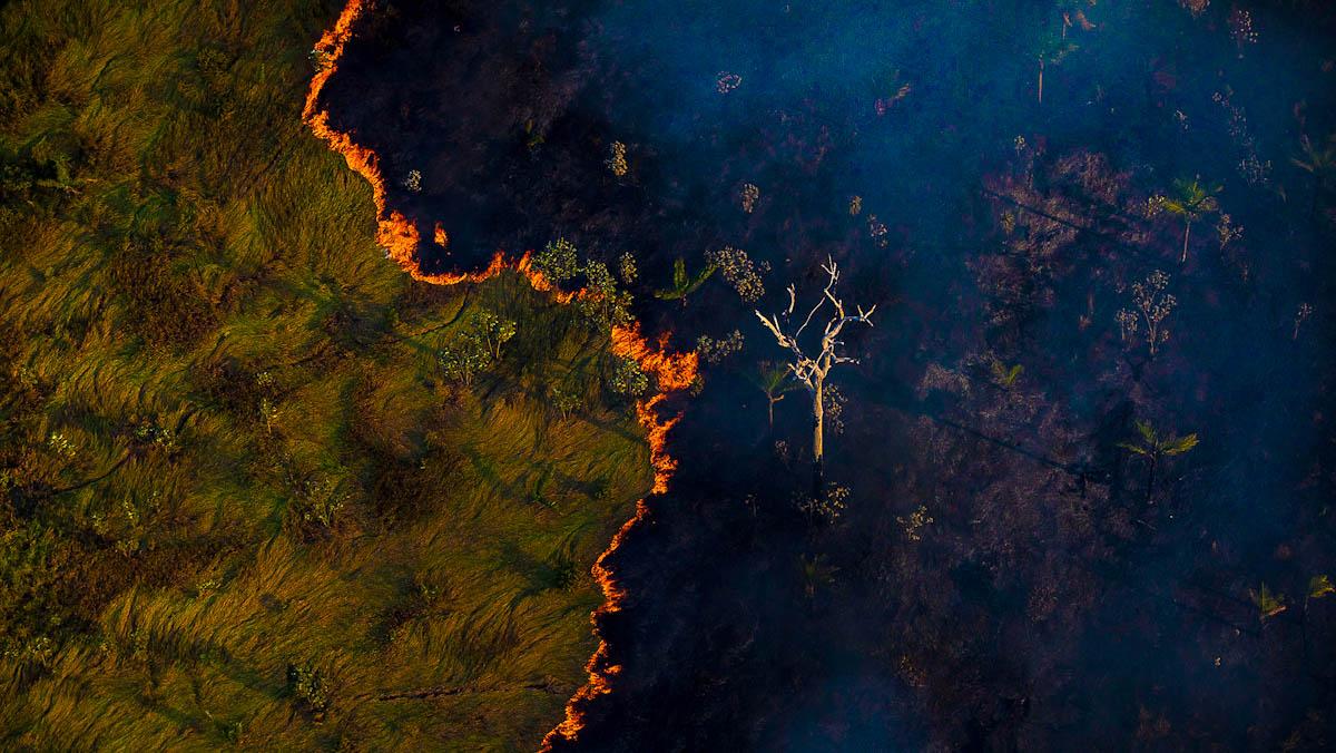 Queimada e vista em meio a área de floresta próximo à capital Porto Velho