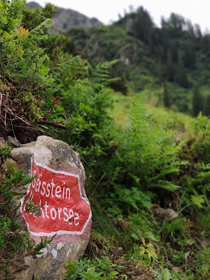 Schusterkogel  Bergwanderung Saalbach  Talschluss Hinterglemm  Wanderung-Saalbach  Wandern-Saalbach SalzburgerLand 02