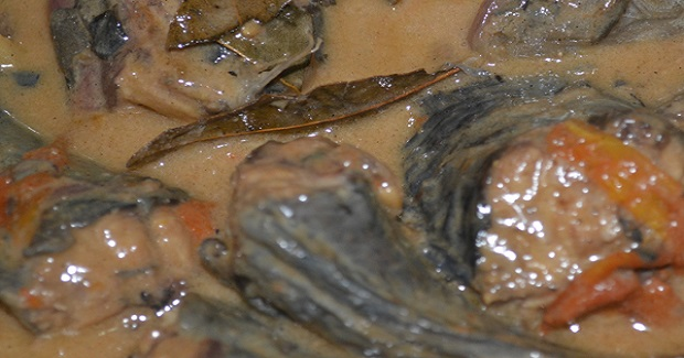 Adobong Hito Sa Gata (Catfish In A Coconut Milk) Recipe