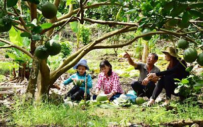 Nhà vườn xã Bình Lộc Tp.Long Khánh