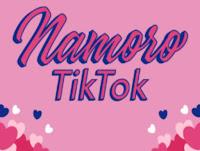 Desafio #NamoroTikTok 2020 Challenge