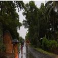 Cyclone 2020 west bangal udisha