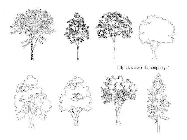 Trees elevation cad blocks download - 5+ Trees Dwg Cad Models