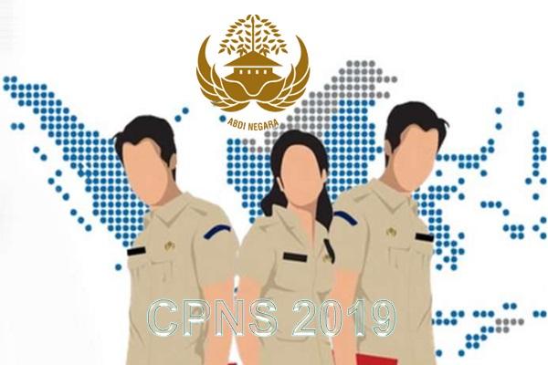 Jadwal Pengadaan CPNS dan PPPK 2019, Beserta, Syarat, Formasi dan Tahapannya
