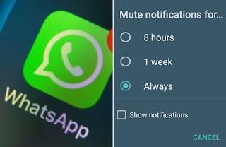 whatsapp always mute