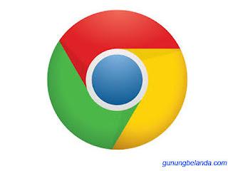 Google Chrome Terbaru Ringan Untuk Aplikasi PC untuk Windows