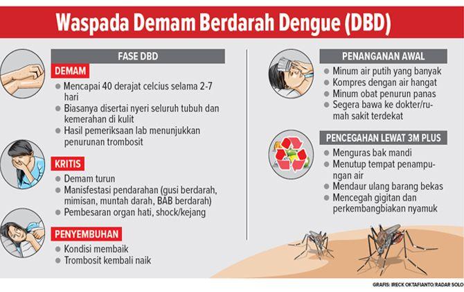 gejala dan pencegahan DBD