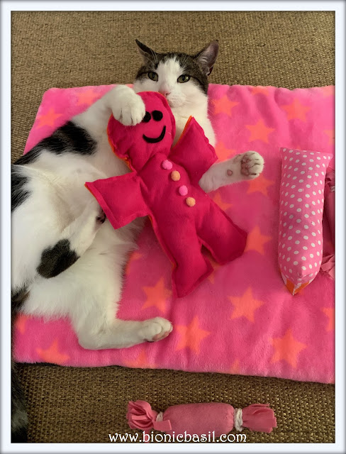 In The Pink With Melvyn Supurr Selfie ©BionicBasil® Sunday Selfies