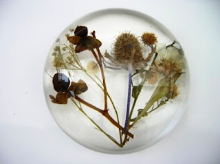 Thistle and flowers within a paperweight
