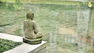 Gautam Buddha Images 100 Hd Wallpapers Pics For Dpmobile