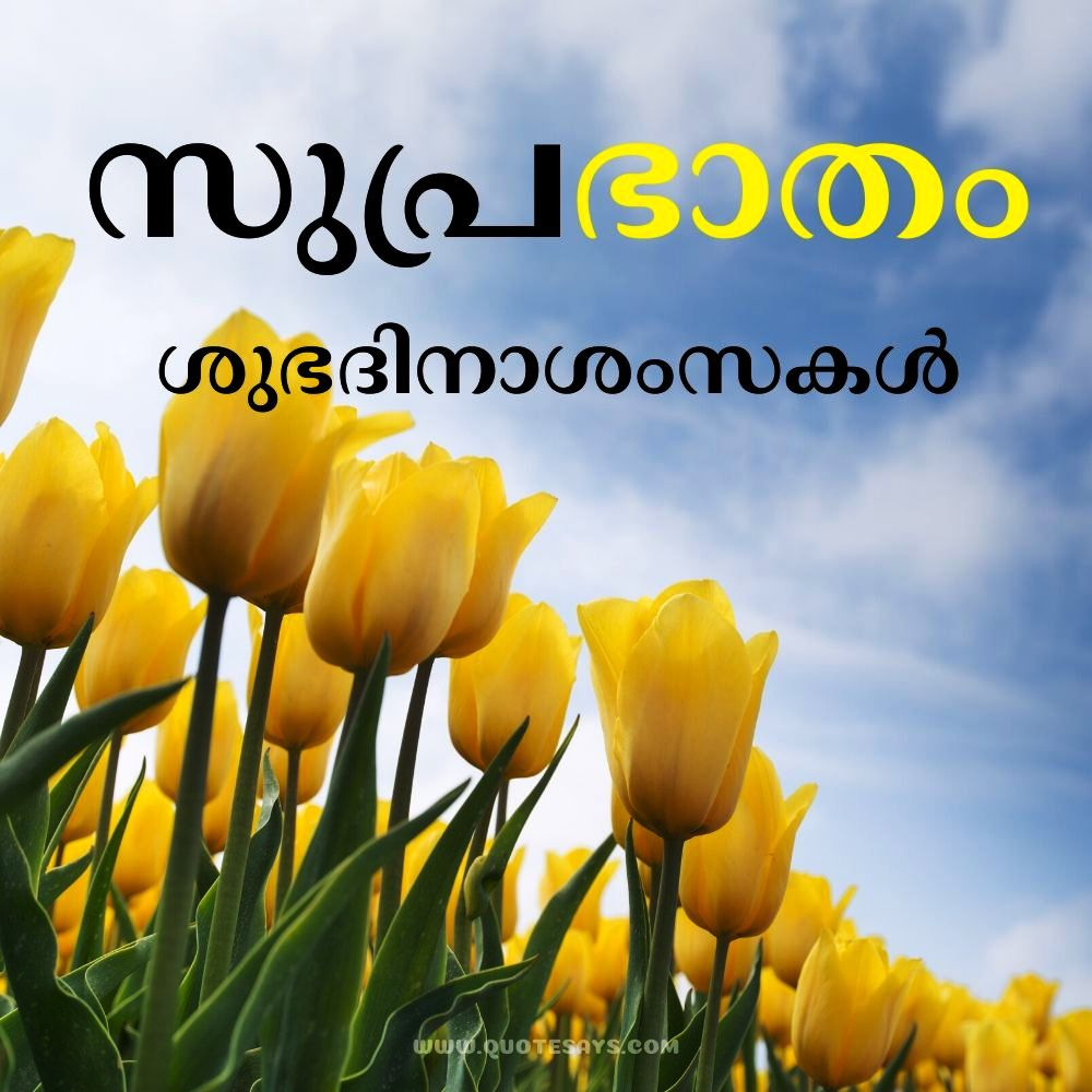 20 Subhravastraṁ Good Morning Images In Malayalam Quote Says
