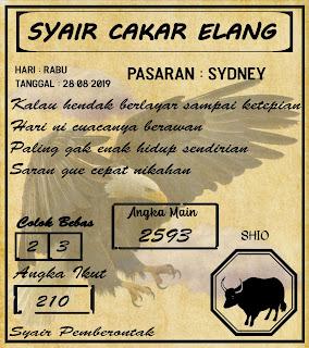 SYAIR  SYDNEY  28-08-2019