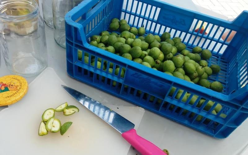 syrop z zielonych orzechów włoskich i miosu lekarstwo domowe