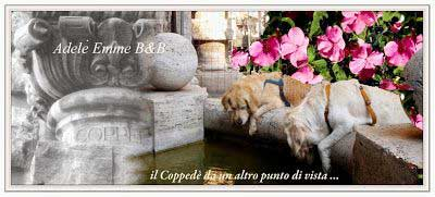 Golden Retriever fontana Coppede' piazza mincio