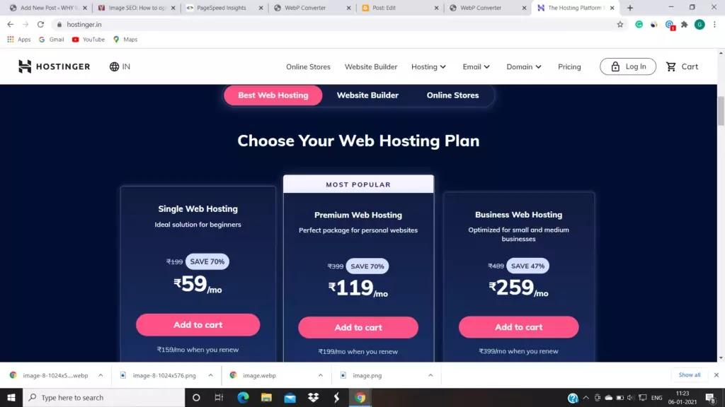 hosting plan in Hostinger.in or WordPress