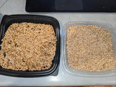 Oak Smoked Lager Recipe & Brewday