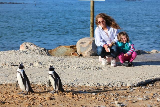 En Sudáfrica viendo pingus
