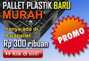www.rajapallet.com