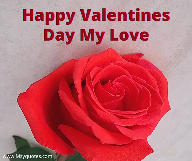 Happy Valentines Day Quotes Shayri For Husband In Hindi & English Images Pics Photos