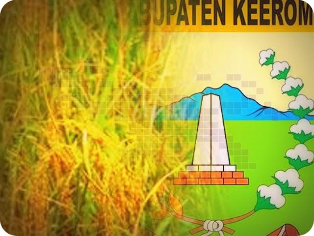 Pemkab akan Buka 1000 Hektar Lahan Padi di Keerom