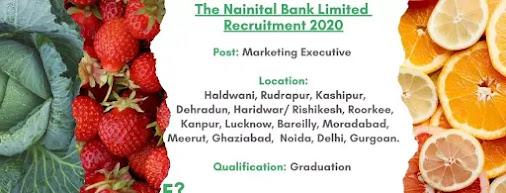 Nainital-Bank-Marketing-Executive
