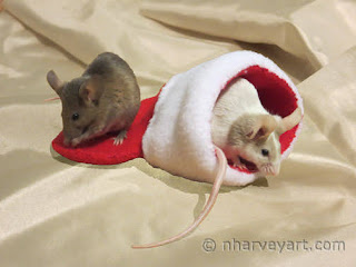 """""""Christmas Mice"""" composite before editing"""