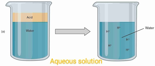 why does an aqueous solution of an acid conduct electricity