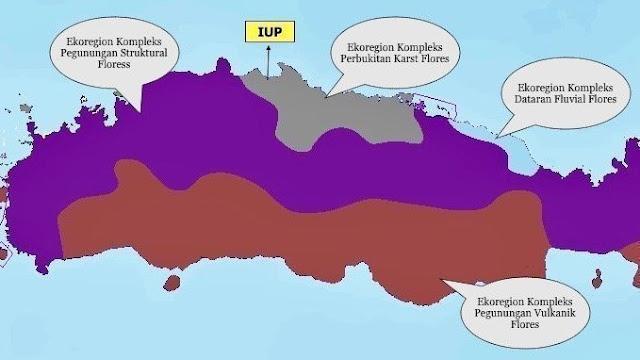 Hentikan Pertambangan Batu Gamping di Manggarai Timur