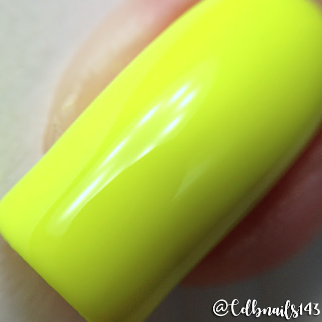KBShimmer-All The Bright Moves