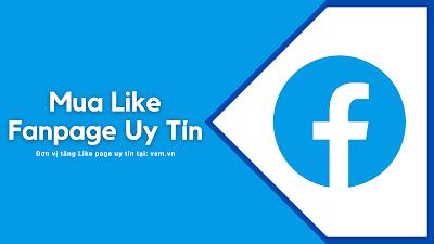 Mua Like Fanpage, Hướng Dẫn Mua Like Page Tại Vsm