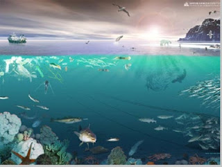 Contoh ekosistem air