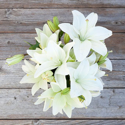 white lilies bouquet delivery Hanoi
