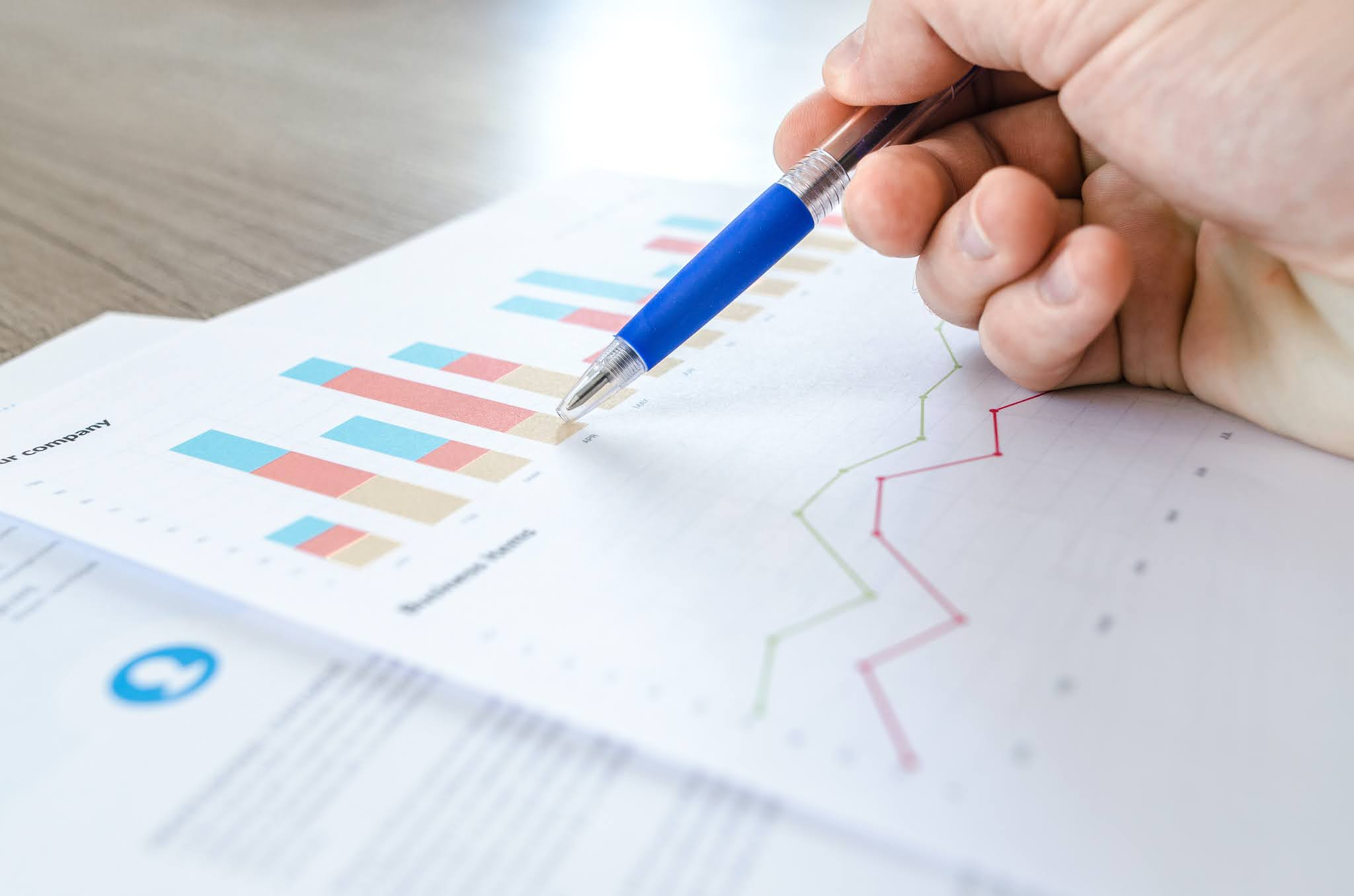 What to read in Auditor's report, How to read Auditors report?