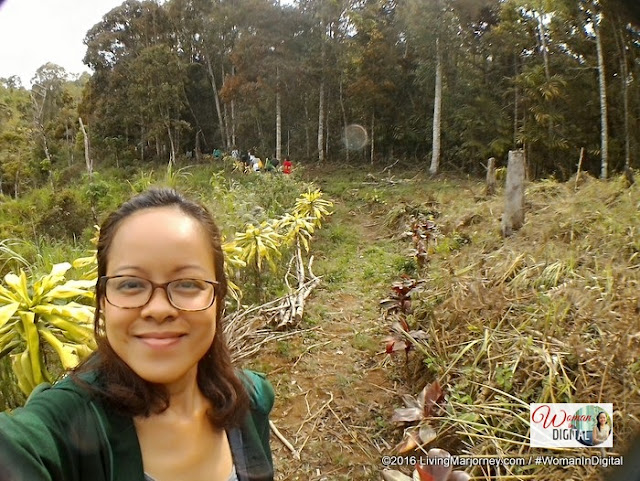 Mt. Kitanglad Forest