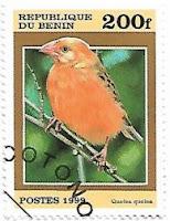 Selo Quelea-de-bico-vermelho