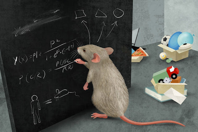 Mice master complex thinking with a remarkable capacity for abstraction